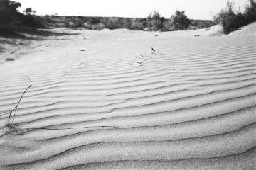 desert blackandwhite freetoedit photography