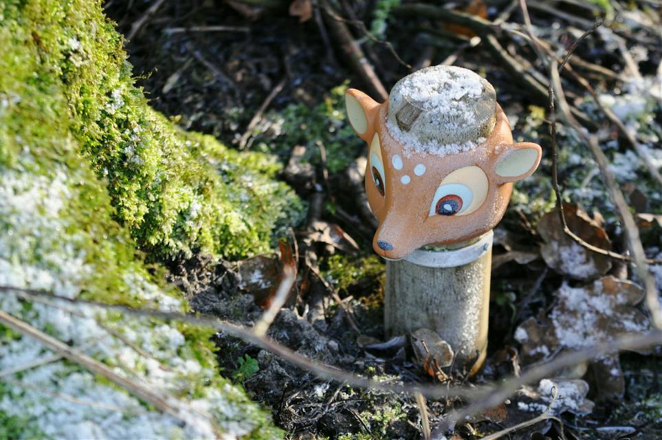 #forest  #frozen  #roe  #plastic  #sunlight  #FreeToEdit #funny #bambi   Happy weekend