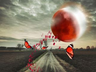 freetoedit moon redmoon road sky