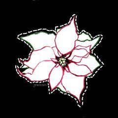 freetoedit flower pointsettia outline dottedoutline