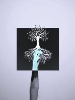 treeoflife invert blackandwhite freetoedit