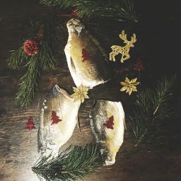 christmastime foodphotography