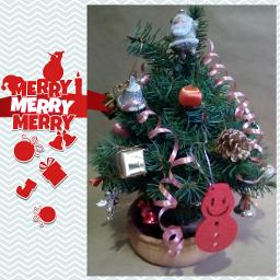 merrychristmas christmastree christmastime christmas framed