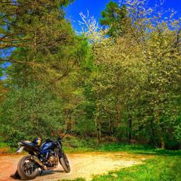 mybike daisy travel tour photography