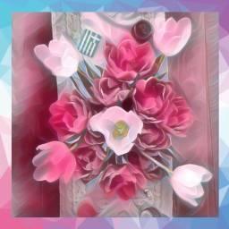 flowers tulips greekflag loveeffects back