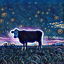whimsical farmlife midnightfilter circles cowsinthefields
