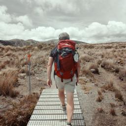 hiking path nature nz tongariro