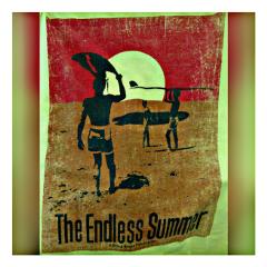 freetoedit endlesssummer tshirt thriftstorefinds