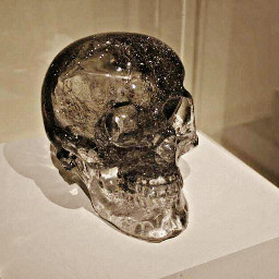 dpcinmuseumsandgalleries houstontx museums skulls crystal freetoedit