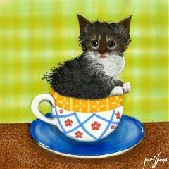 wdpcoffee