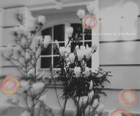 blackandwhite circle blur photography myart