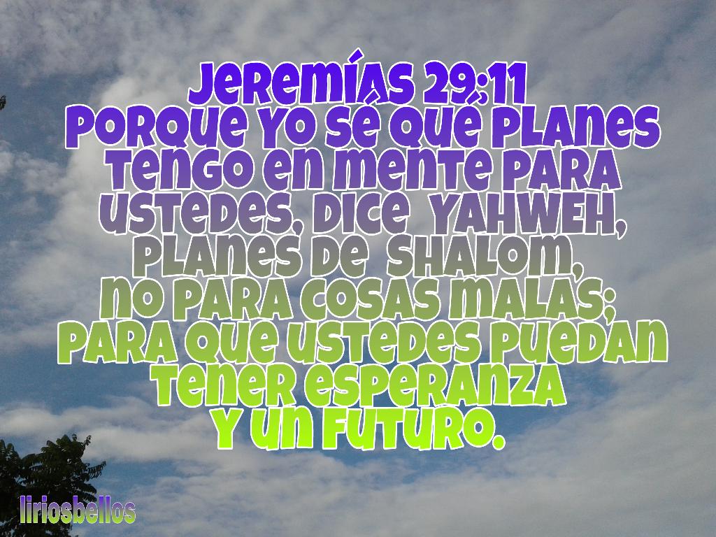 Populares Jeremías 29 11 Porque Yo sé qué planes tengo en mente p TW15